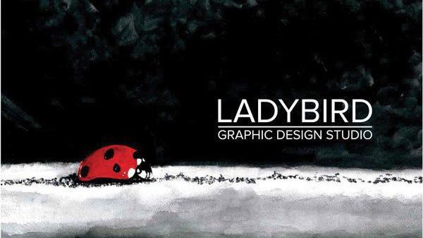 5000 here Faleminderit nga Ladybird